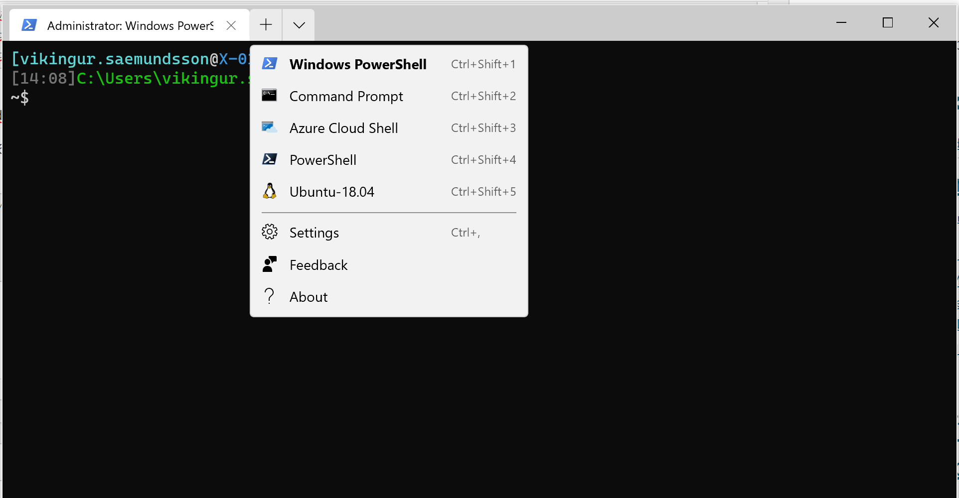 Windows Terminal Linux